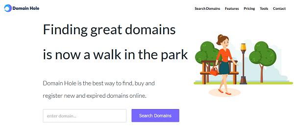 Domain Hole Tool